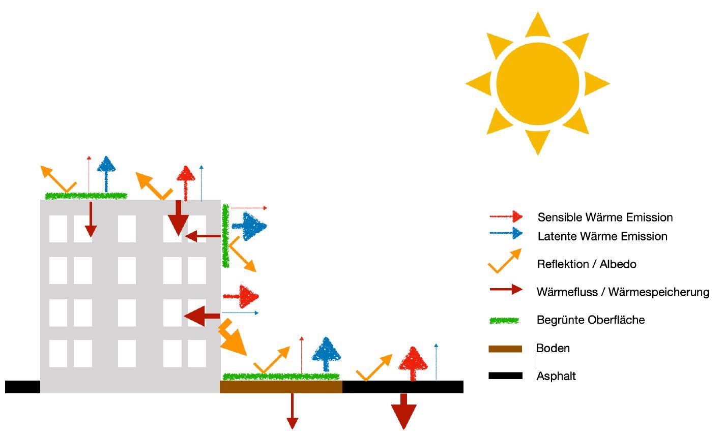 Verhalten urbaner Materialien bei Sonneneinstrahlung: durch Grünflächen erhöht sich der latente Wärmeanteil (durch Verdunstung) gegenüber dem sensiblen Wärmeanteil (fühl- bzw. messbare Wärme).